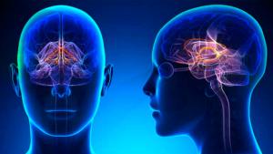 Neurología Cirugía vascular periférico consulta externa Fundación hospital san carlos